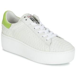 Boutique Chaussures ASH Cult Blanc Basket Basses Femme Réduction En Ligne