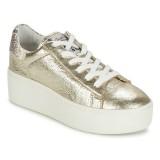 Chaussures ASH Cult Doré Basket Basses Femme Collection Pas Cher