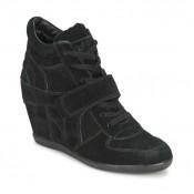 Nouvelle Chaussures ASH Bowie Noir Basket Montante Femme Vendre à Des Prix Bas