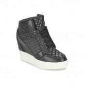 Promo Chaussures ASH Azimut Noir Basket Montante Femme Pas Cher Lyon