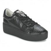 Soldes Chaussures ASH Cult Noir Basket Basses Femme Remise prix