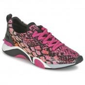 Chaussures ASH Hit Rose Basket Basses Femme Collection Rabais En Ligne
