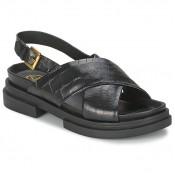 Chaussures ASH Sue Noir Sandale Femme En Promotion