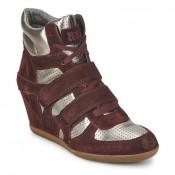 Collection Chaussures ASH Bea Bordeaux / Doré Basket Montante Femme Jusqu''à -65%